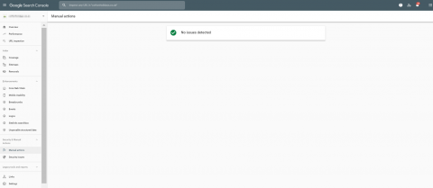 Search Console Manual Action